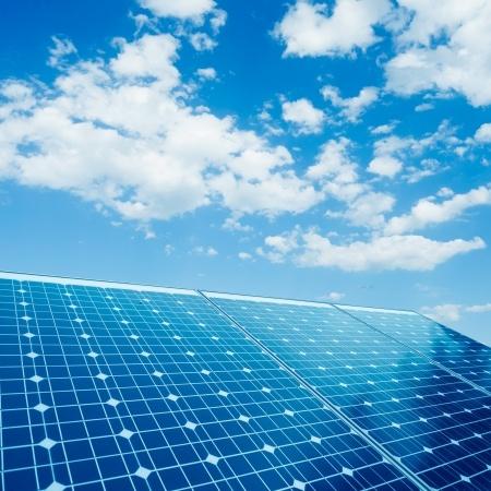 Solar Panels Mean Success at California Farm - Tim Kyle