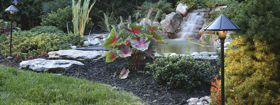 Outdoor String Lights That Do Not Attract Bugs : Landscape Lighting That Wo not Bug You - Tim Kyle Electric