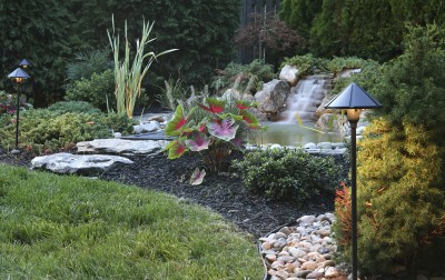 Landscape Lighting - Tim Kyle Electric