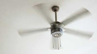 ceiling fan - Tim Kyle