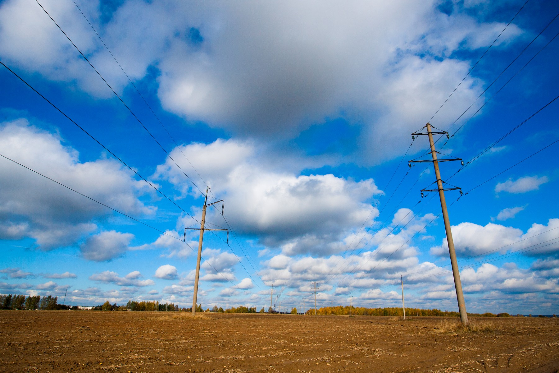 downed power line - Tim Kyle