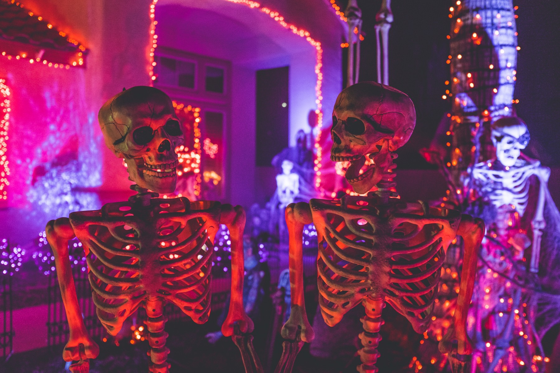 Halloween lights - Tim Kyle