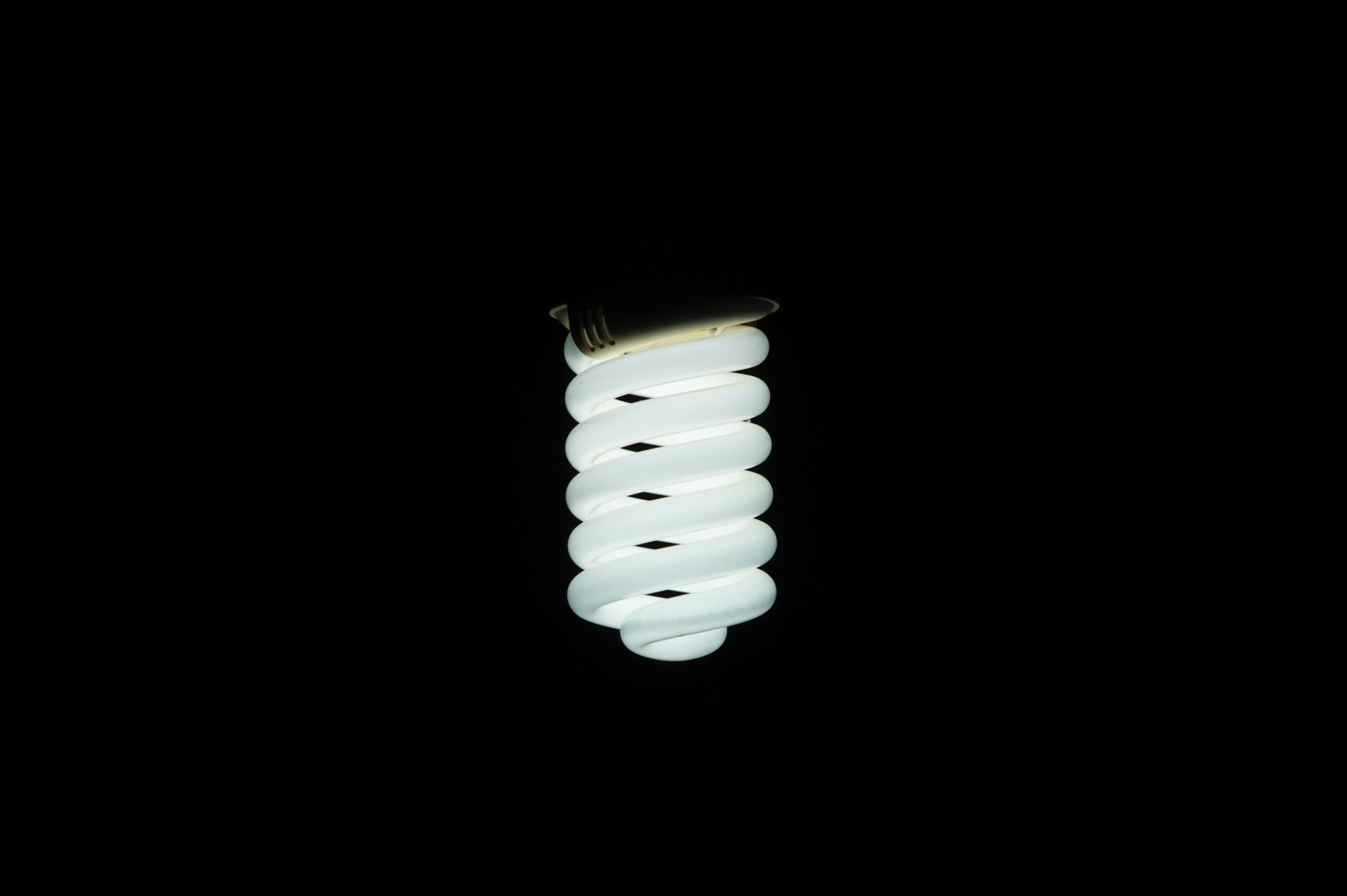 fluorescent bulbs - Tim Kyle