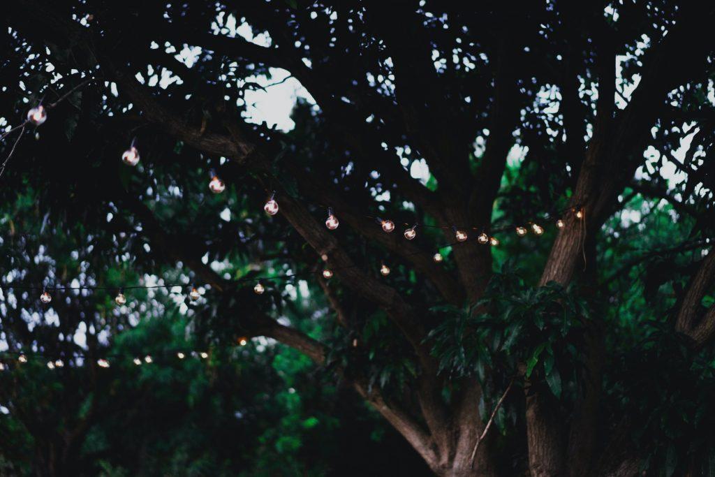 landscape lighting - Tim Kyle