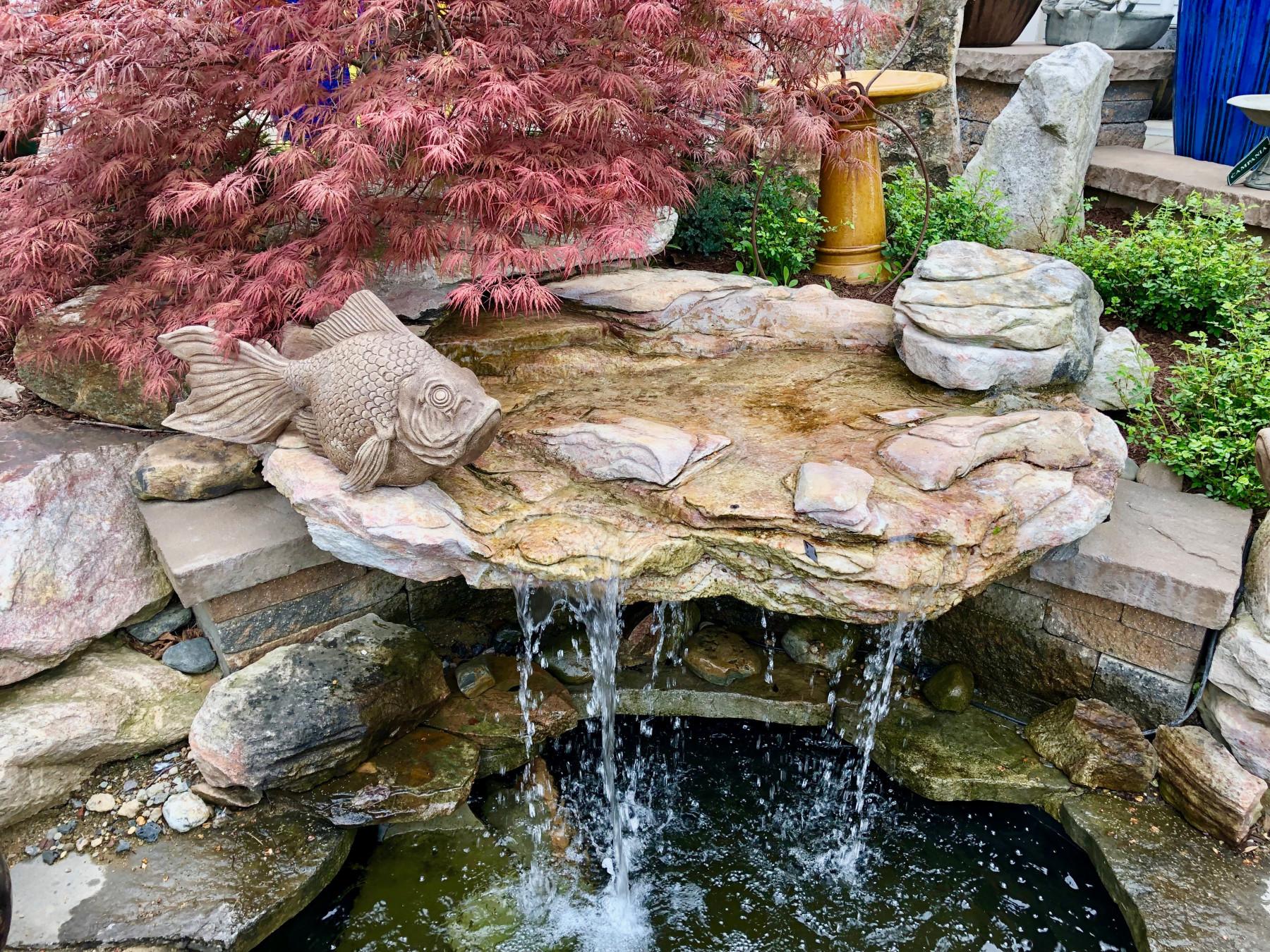 backyard waterfall - Tim Kyle